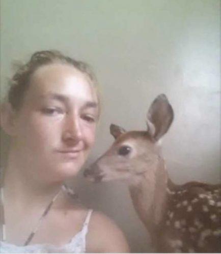 baby-deer-selfie-555x640